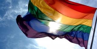 Rainbow flag photo credit: Common Wikimedia Ludovic Bertron