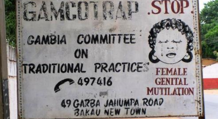 http://womennewsnetwork.net/2014/06/26/plight-of-fgm-gambia/