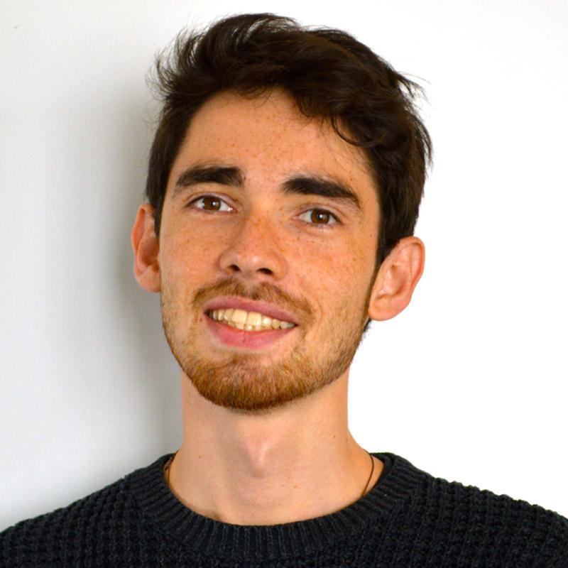 Profile Photo of ISHR staff Raphaël Viana David